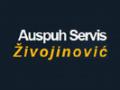 Servisi firme srbije